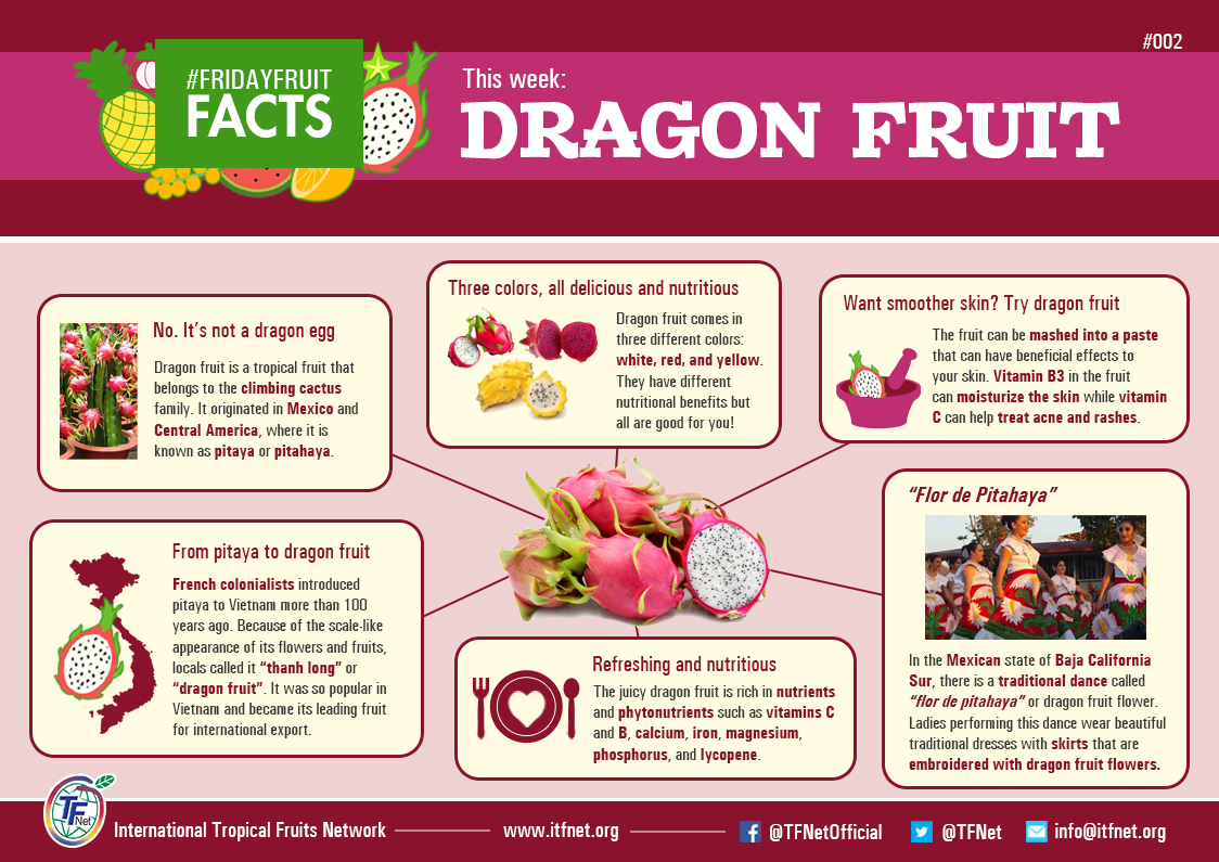 Dragon fruit comes in three colors white pink and red or magenta white - Infograph Friday Fruit Facts 002 Dragon Fruit