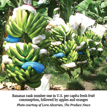USA: Bananas continue to remain at the top when it comes to imports