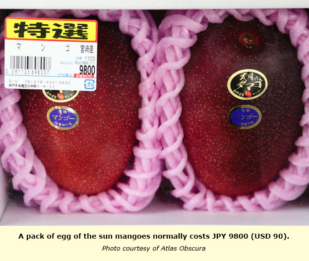 JAPAN: Egg of the Sun mango, how can a fruit be worth USD