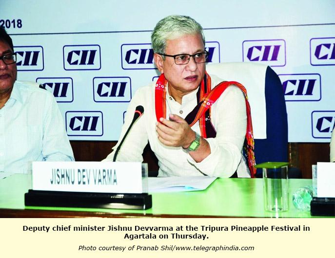 INDIA: Action plan on pineapple | TFNet – International